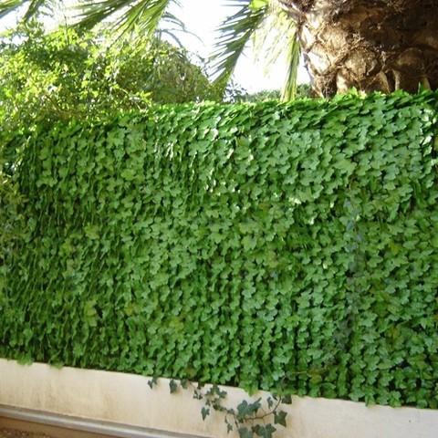 Haie artificielle feuilles lierre, Variante: Ht.1.5 x Lg.3 m