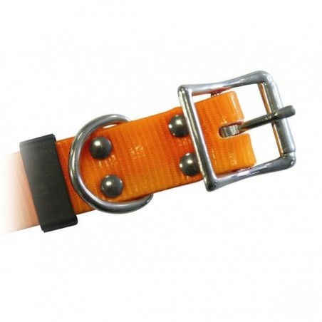 Collier de dressage Canicom sangle orange