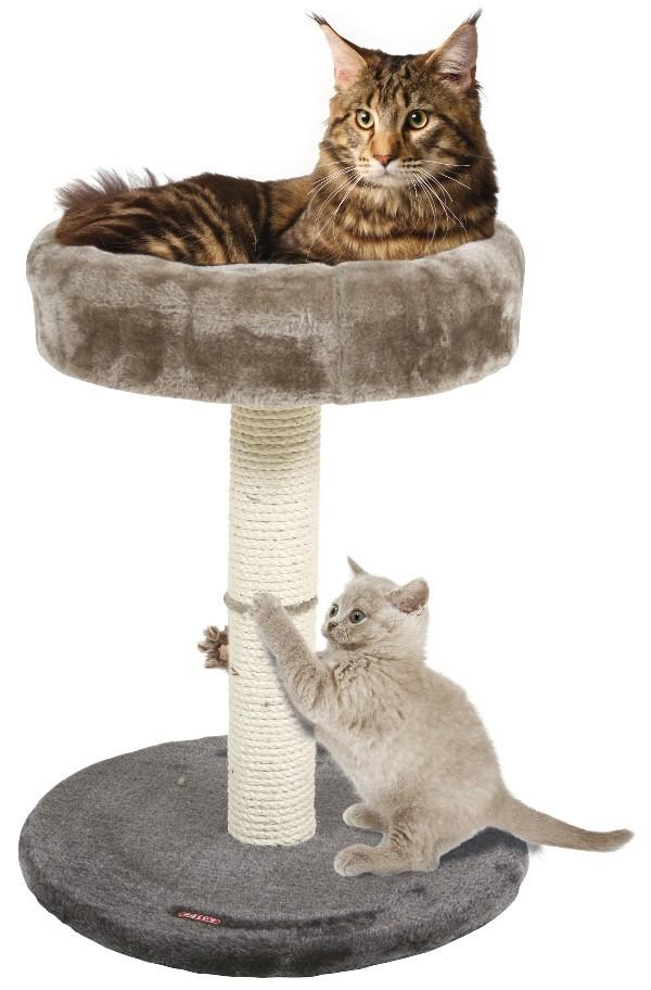 Arbre à chat 4 en 1 Gris Zolux