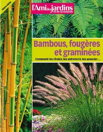 Bambous, fougères et graminées