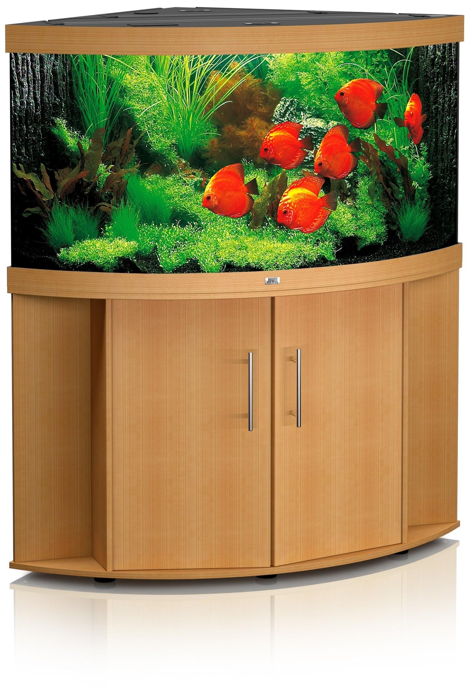 Aquarium d'angle Trigon 190 hêtre + meuble