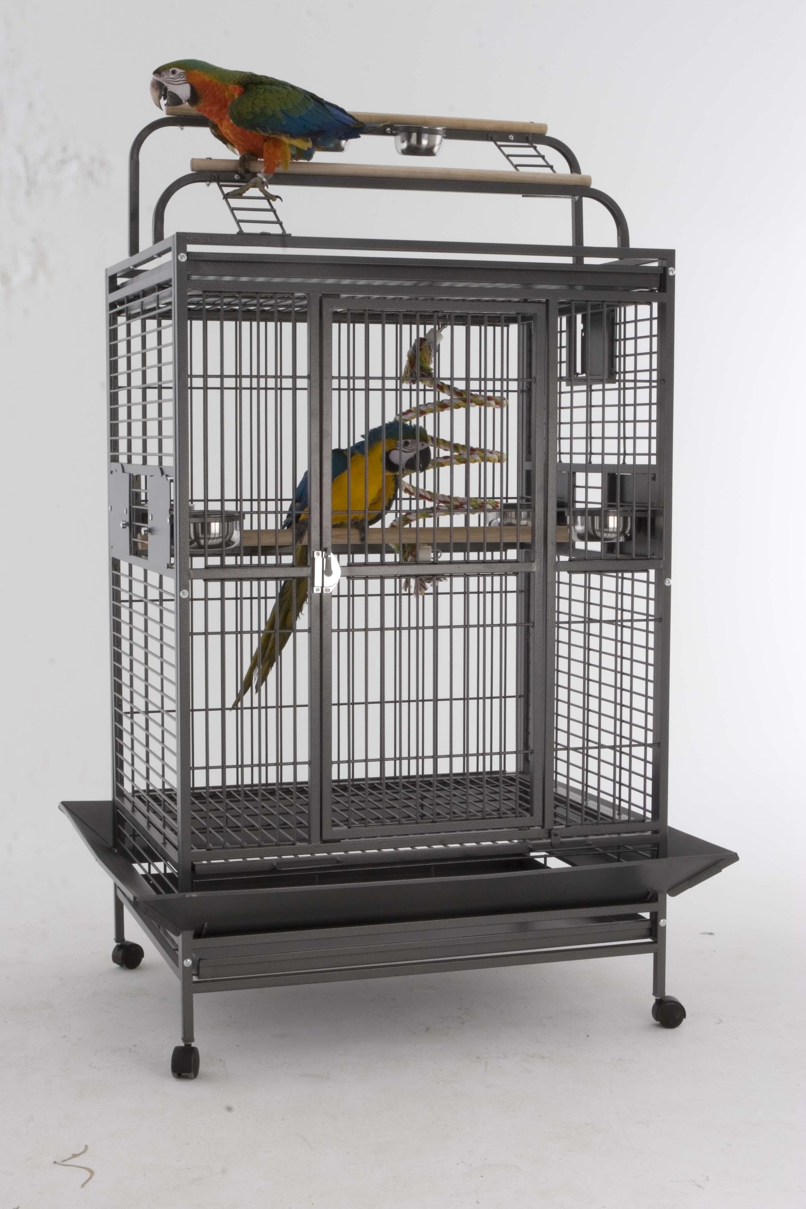 Cage pour perroquet Hacienda Gym Top