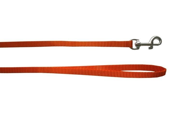 Laisse pour chien nylon unie Rex, Couleur: Orange, Taille: 1.5 cm x 1 m