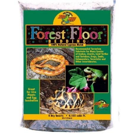 Substrat pour terrarium Forest Floor