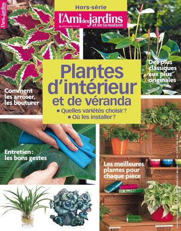 Les plantes d'intérieur et de véranda