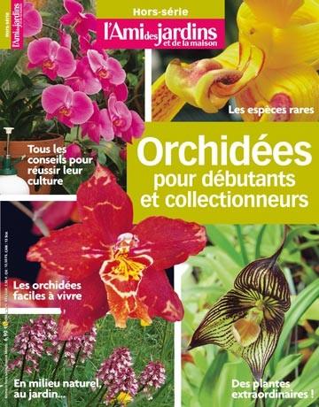 Orchidées pour débutant et collectionneurs