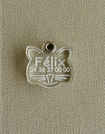 Medaille pour chat transparente forme chat, Transparente: Incolore