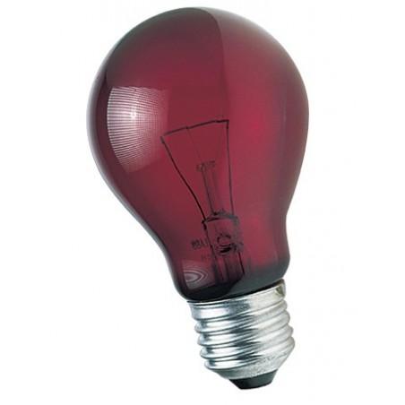 Ampoule 60 W Rouge lumière de nuit pour reptiles