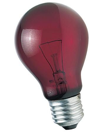 Ampoule Zoo Med 60W Rouge lumière de nuit pour reptiles