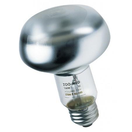 Lampe spot pour terrarium