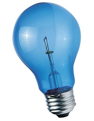 Ampoule Zoo Med 60W Bleue lumière de jour reptiles