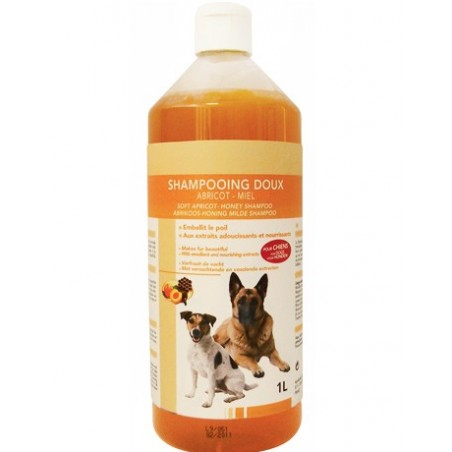 Shampooing doux abricot-miel