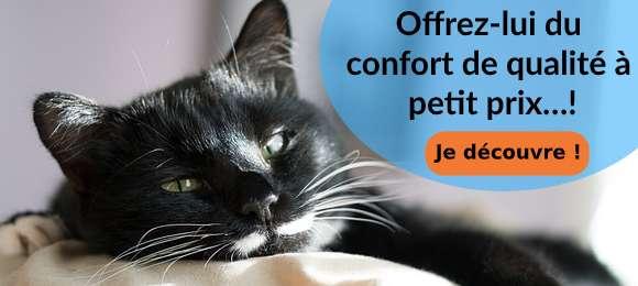 Couchages pour chat et chien